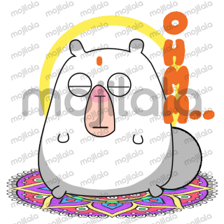 Putuuu is an adorable hamster!!!!! He meditates and does yoga daily.
