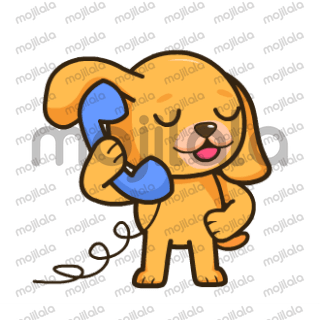 A golden dog with cuteness