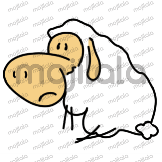 Fluffy sheep share emotion and more.