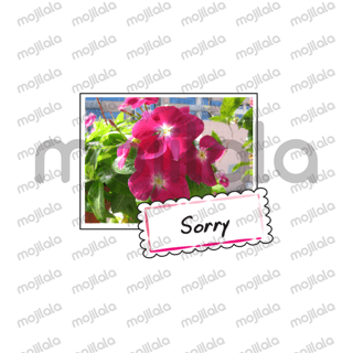 beautiful flower with greeting card