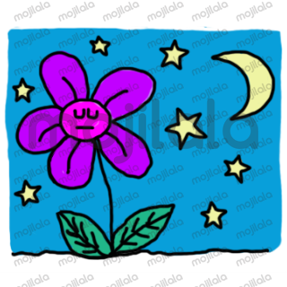 Enjoy the life of this cute flower, she likes rainbows, picnics and spending time with friends.