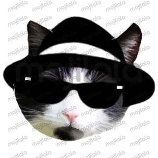 people & animals wearing sunglasses and hats