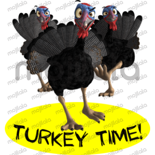 Terry Turkey takes over Thanksgiving!