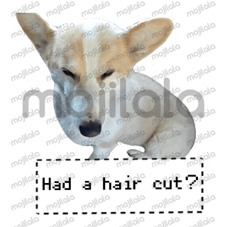 Check out my original Welsh Corgi stickers! 