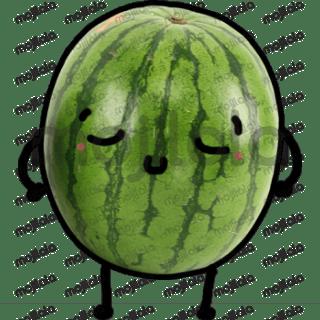 Watermelon sticker pack.