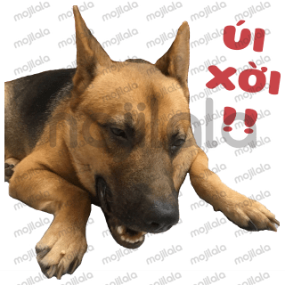 This is the first sticker of my dog. 