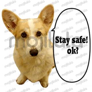Positive Corgi cheering everyone whom are affected by the Corona virus.