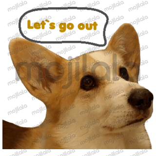 This is a set of stickers of cute fluffy Welsh Corgi