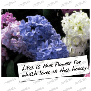 flowers with love greeting card so sweet
