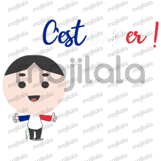Learn everyday used phrases in French quickly! This will help you speak French in no time. Check out our other sticker packs for more languages!