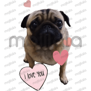 Winston the pug stickers! @winstonlepug Instagram