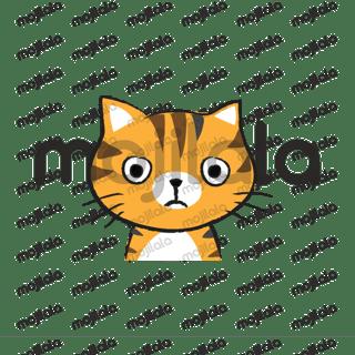 Orange cat so cute