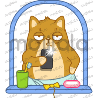 Teodor The Cat is ginger cat on a strict diet, having a healthy lifestyle, trying to slim up a bit.