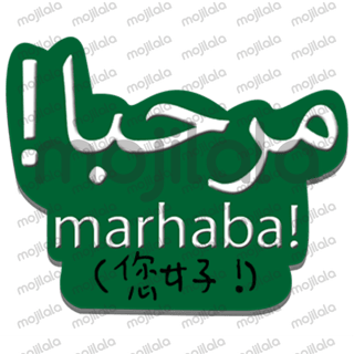Learn everyday used phrases in Arabic quickly! This will help you speak Arabic in no time. Check out our other sticker packs for more languages!