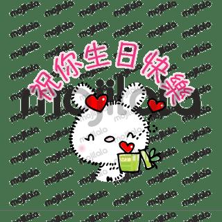 文兰胖胖白兔子