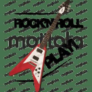 Rock'n'roll legendary guitars